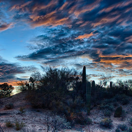Sunrise over Tucson by Charlie Alolkoy - Landscapes Deserts ( clouds, desert, sky, sunset, sunrise )