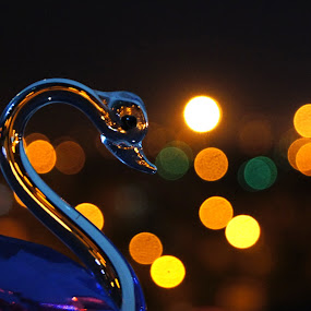 LIghted Swan 3 by Ritwick Srivastava - Artistic Objects Other Objects ( lights, vivid, glass, swan, crystal )