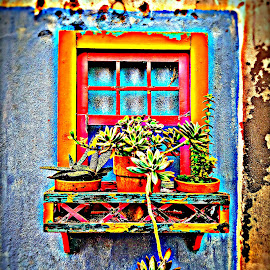 Monchique/Portugal/Hauswand mit Fenster by Marianne Fischer - Digital Art Places