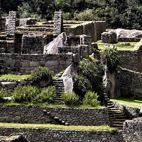 Stairs by Lyn Simuns - Buildings & Architecture Public & Historical ( stairs, peru, machu picchu,  )