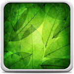 Green Leaves Live Wallpaper Icon