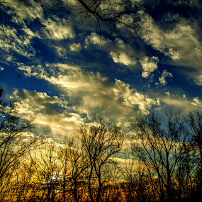 Sklgiht by Theodore Schlosser - Landscapes Cloud Formations ( clouds, detail, blue sky, colorful, blue, silhouette, sunset, beautiful, trees, tree tops )
