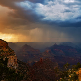 Sky Over Grand Canyon by Peter Murnieks - Landscapes Mountains & Hills ( sky, grand, distant, plants, atmosphere, canyon, trees, day, storm, landscape, rocks,  )
