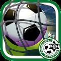Maccabi Haifa - Green GOAL