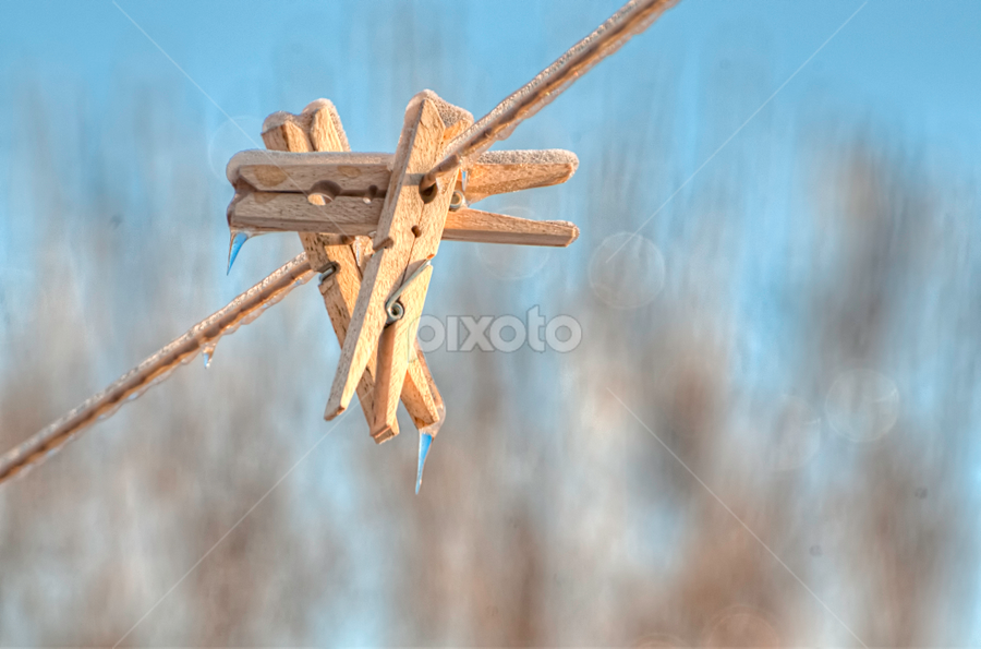 Pins... by Luc Belisle - Abstract Fine Art ( winter, cold, threesome, ice, cloths pins )