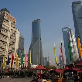 Colourful Shanghai by Joe Kandra - City,  Street & Park  Skylines