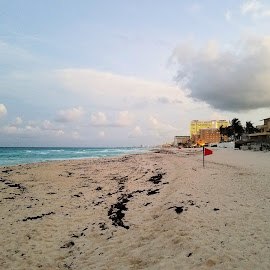Walking on the Beach by Jesse Thrush - Instagram & Mobile Android ( cancun, water, carribean, mexico, ocean, beach )