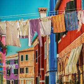 Laundry Day by Richard Michael Lingo - City,  Street & Park  Street Scenes ( venice, street scene, italy, laundry, city )