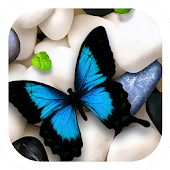Free Butterfly on Stones Theme APK for Windows 8
