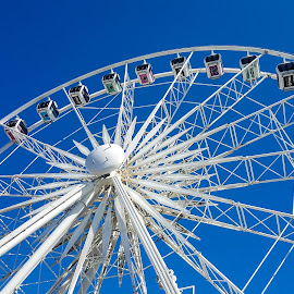 Ferris Wheel by Carmen Bouwer - City,  Street & Park  Amusement Parks ( structure, amusement park, blue, white, buildings, architecture, entertainment, ferris wheel )
