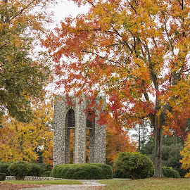Beautiful Cemetery  by Teresa Solesbee - City,  Street & Park  Cemeteries ( nature, colors, cemetery, fall, trees )