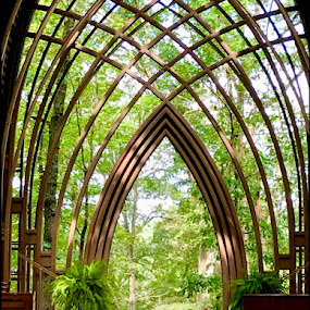 Chapel in the Trees by Jennifer  Loper  - Buildings & Architecture Places of Worship ( bella vista, glass ceiling, arkansas, weddings, trees, christmas, mildred b. cooper memorial chapel,  )