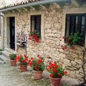 by Nena Dankić - Buildings & Architecture Homes