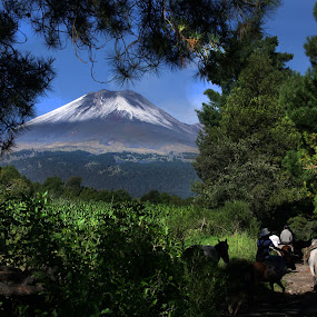 Horse riders and volcano by Cristobal Garciaferro Rubio - Nature Up Close Trees & Bushes ( volcano, mexico, popocatepetl, smoking volcano, snowy volcano )