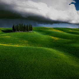 *** by Ash Vain - Landscapes Prairies, Meadows & Fields ( field, clouds, tuscany, sunset, trees, landscape, italy )
