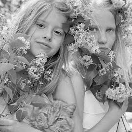 by Tove Landberg - Babies & Children Child Portraits ( children, cat, girls, portrait, family )
