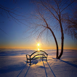 Thoughts and Prayers by Phil Koch - Landscapes Sunsets & Sunrises ( vertical, bench, arts, travel, love, sky, nature, shadow, snow, weather, light, trending, colors, twilight, art, white, mood, horizon, journey, portrait, rural, country, winter, dawn, environment, season, serene, outdoors, popular, lines, natural, inspirational, hope, shore, canon, wisconsin, joy, frozen, landscape, sun, photography, life, emotions, endless, dramatic, horizons, inspired, clouds, office, heaven, beautiful, scenic, living, morning, shadows, field, fineart, blue, unity, sunset, peace, meadow, sunrise, earth )