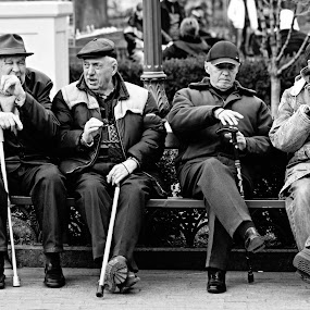 Four men and their four assistants. by Marcel Cintalan - Black & White Street & Candid ( old men, ukraine, park, relax, odessa, street, sticks, central park, people, street photography )