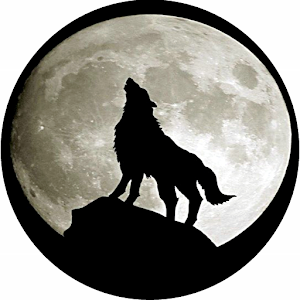 Download Gray Wolf Wallpapers For PC Windows and Mac