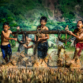 The Race In Rice Fields by Pimpin Nagawan - Babies & Children Children Candids