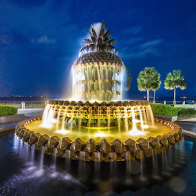 Pineapple Fountain by David Long - City,  Street & Park  Fountains ( charleston, pineapple fountain, south carolina )