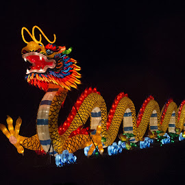 Lantern Festival 13 by Harvey Lindenbaum - City,  Street & Park  Night ( chinese lantern festival, night )