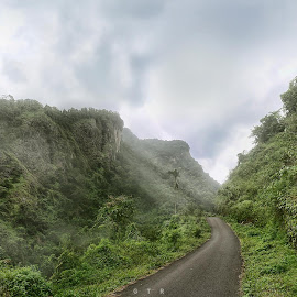 the great siregol by Guntur Hanafi - Novices Only Landscapes ( purbalingga, hill, foggy, lonely road, green, indonesia, siregol, misty )