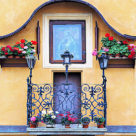 Pretty Balcony/Window by Tina Stevens - Buildings & Architecture Architectural Detail ( door, filigree, flowers, window detail, lamps, nature, upper, metal, medieval, balcony, window boxes, picture, painting, iron, domicile, window, residence, lights, architecture,  )