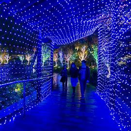 Xmas @ Namba Parks by Kwoh LK - Public Holidays Christmas