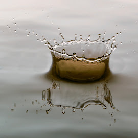 Crown by Louis Heylen - Abstract Water Drops & Splashes