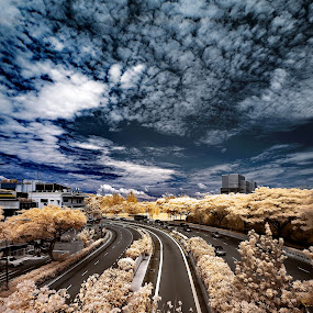 by Jimmy Chiau - City,  Street & Park  Vistas ( infrared )