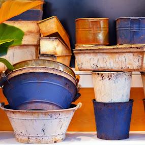 Garden wares by Kelvin Đào - Products & Objects Technology Objects ( metal, rusty, leaves, garden, flower )