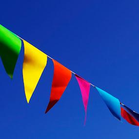 Flags by Marina Jambrec - Digital Art Things ( jambrec, marina, my, design, photography )