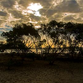 Rainbow by Jo Soule - Landscapes Beaches ( water, tide, sea, trees, beach, sun,  )