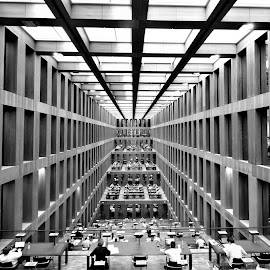 Library by Todor Musev - Black & White Buildings & Architecture ( humboldt university, library, books, university, berlin )
