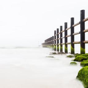Dreamy Beaches by Avi Chatterjee - Landscapes Beaches ( tides, dreamy, heavenly, heaven, dream, oman, long exposure, jetty, creamy, beach, earth, salalah )