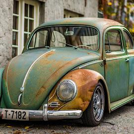 Rusty Bug by Jørn Lavoll - Transportation Automobiles ( car, vw, rusty, rust, beetle,  )