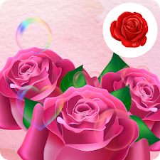 Instant Love Rose Wallpaper