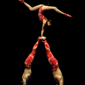 Circus Performers by Janice Rimmer - People Musicians & Entertainers
