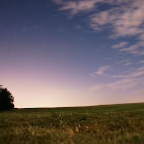 Eakins Field by Kevin Sullivan - Landscapes Prairies, Meadows & Fields ( night, alabama )