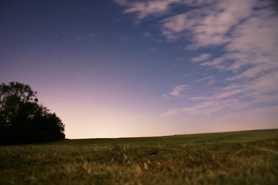 Eakins Field by Kevin Sullivan - Landscapes Prairies, Meadows & Fields ( night, alabama )