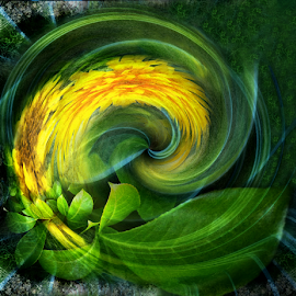 FLORAL by Carmen Velcic - Digital Art Abstract ( abstract, green, yellow, flowers, digital )