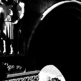Venise by Irena Iris Willard - Buildings & Architecture Statues & Monuments ( venezia, carnival, venice carnival italia carnevale venezia, venice, venise )