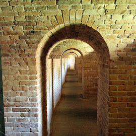 Arches of Fort Barrancas by Chris Snyder - Buildings & Architecture Architectural Detail ( arch, gulf islands national seashore, brick, fort barrancas, architecture, fort, pensacola, nps, pensacola nas, national park, pensacola naval air station, florida, arches, bricks )