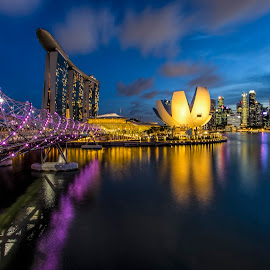 by Gordon Koh - City,  Street & Park  Night ( shenton way, skyline, reflection, blue hour, riverfront, marina bay sands, cityscape, travel, singapore, city, skyscraper, mbs, asia, art science museum, waterfront, asm )
