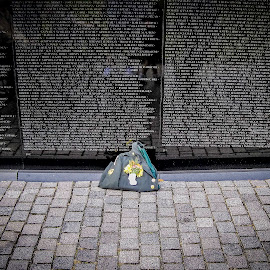 Honor by Shawn Klawitter - Buildings & Architecture Statues & Monuments ( soldier, the wall, vietnam war, honor, memorial day )