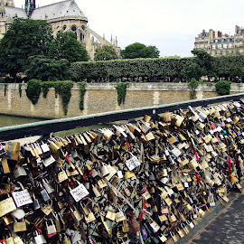 Locked Love by Gianni Frasca - Artistic Objects Other Objects ( love, paris, street, bridge, artistic objects, padlock, street photography )