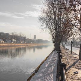 by Katy Nedelcu - City,  Street & Park  Skylines