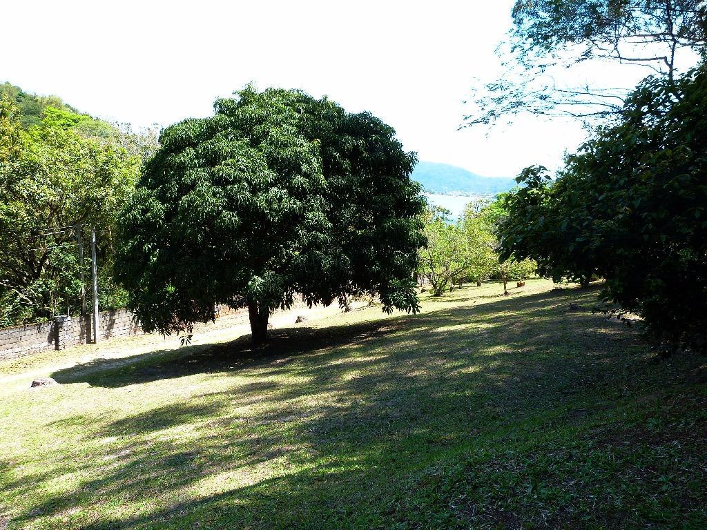 Terreno, Lagoa da Conceição, Florianópolis (TE0205) - Foto 15