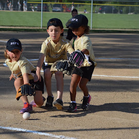 T-Ball by Shannon Maltbie-Davis - Sports & Fitness Baseball